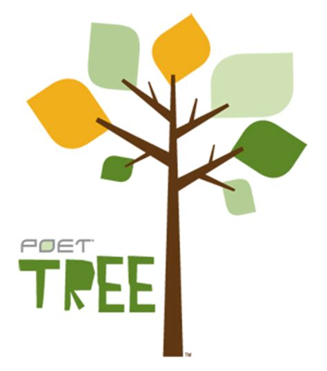 Importance of Trees Essay Example - Bla Bla Writing